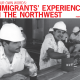 in our own words immigrants experiences