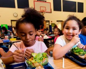 Healthy School lunch jpg